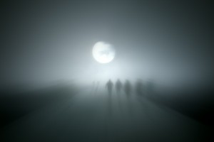 The Zombies Wandering Through The Fog