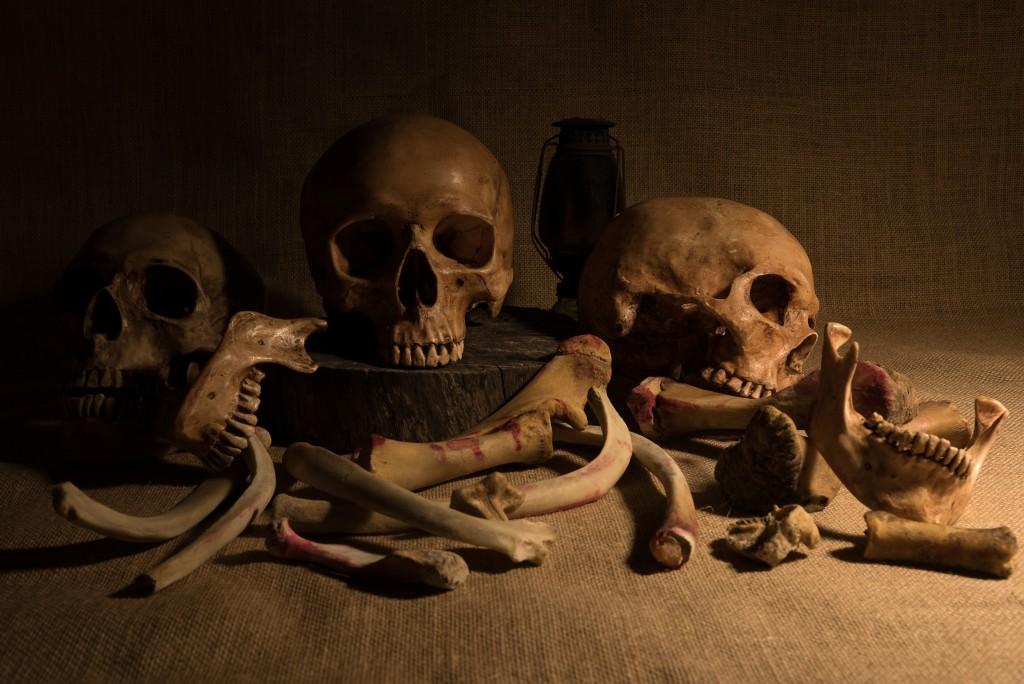 Bones Of The Fallen