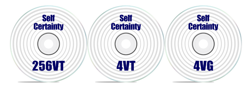 Self Certainty